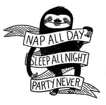 27 Adorable Things Every Sloth Lover Needs
