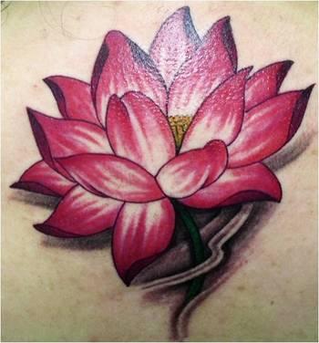 Lotus Flower Tattoo Man - LiLz.eu - Tattoo DE
