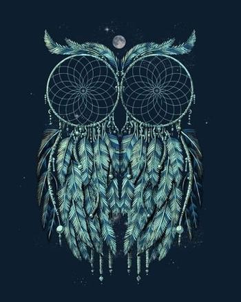 Owl dream catcher. This is amazing!