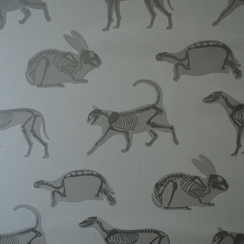 New Wallpaper and Fabric Designs from PaperBoy