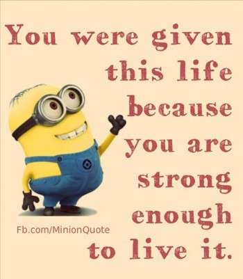 Lol Minions captions 2015 (01:07:05 PM, Tuesday 09, June 2015 PDT) - 10 pics - Funny Minions