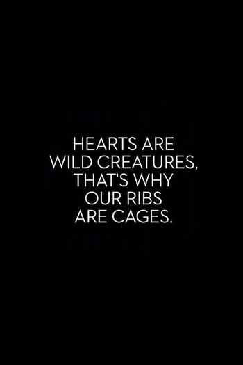 Hearts are wild creatures, that's why our ribs are cages.