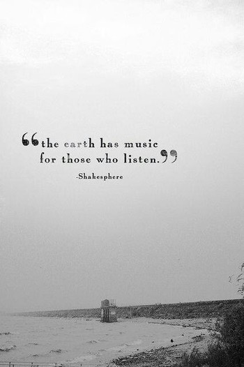 Yes I am aware that Shakespeare is misspelled, and that the origin of this quote is shrouded in myste