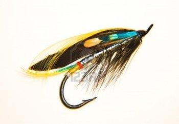 Fishing Fly Stock Photo - 10485659 tattoo