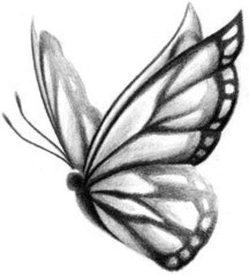 Butterfly of Beauty Tattoo Design at BullseyeTattoos.com