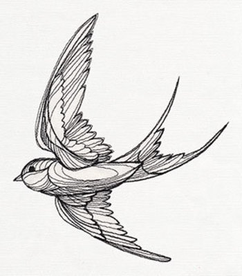 Engraved Swallow