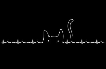 My heartbeat...this would have made a great tattoo!
