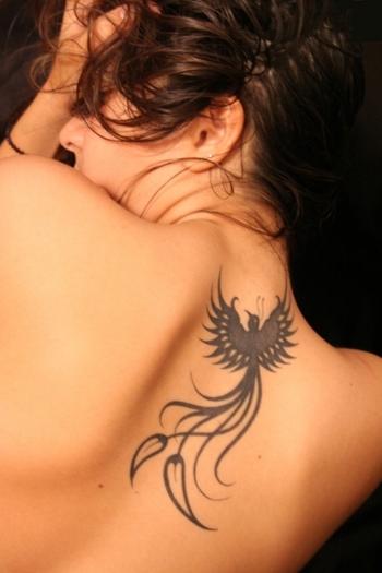 This may be the one. tattoo birds | ... Tattoo #27885 Phoenix Bird Tattoo Symbolic Beauty Fenix Tattoo Tattoos