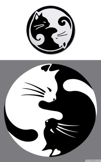 30 Cool Yin Yang Tattoos - Perfect Designs & Ideas | BestPickr
