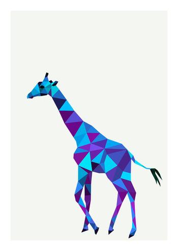 Typography & Illustration - The Underduck Graphic Design