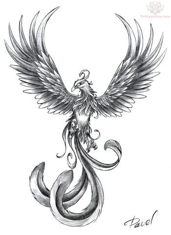 Phoenix Tattoos  : Page 21