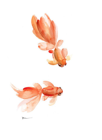 Goldfish Watercolor Painting Pisces Zodiac Sign Orange Red Fishes Home Decor