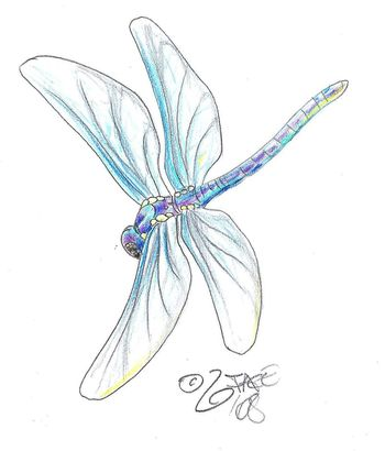 Google Image Result for http://www.deviantart.com/download/75999172/Dragonfly_Tattoo_Design_by_2Face_