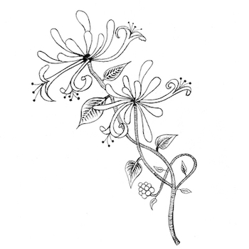 Lavinia Stamps   –  Product Categories  –  Flowers and Foliage