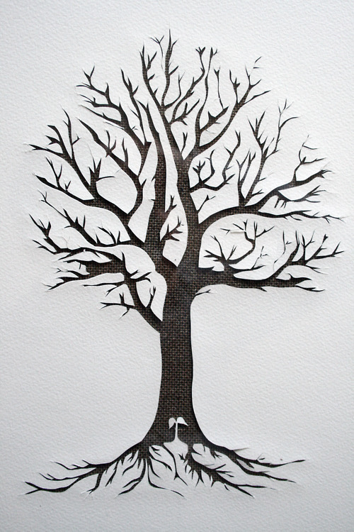 Dericulous paper tree original