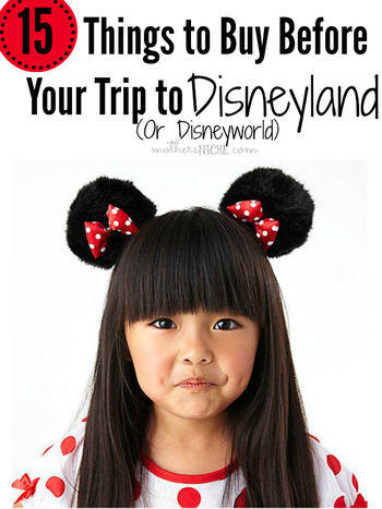 So many things I hadn't thought of and we are leaving for Disneyland next week. I like the idea of br