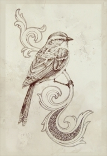 i like the bird but not the design