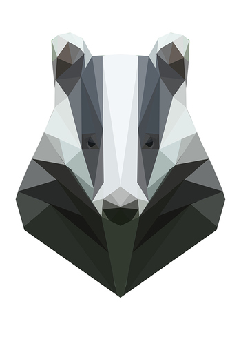 Geometric Animals on Behance - PROJECT BY Charly Hayes -- Cardiff, United Kingdom