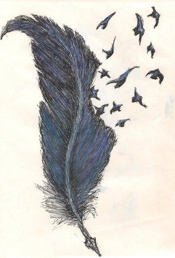"""Gorgeous: """"Poe Birds Sketch by ~BreathOfNocte on deviantART"""""""