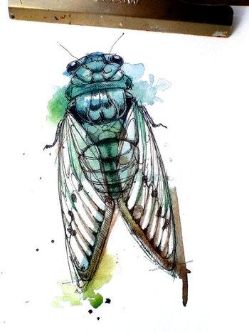 "Turquoise Cicada- 8""x10"" Print"