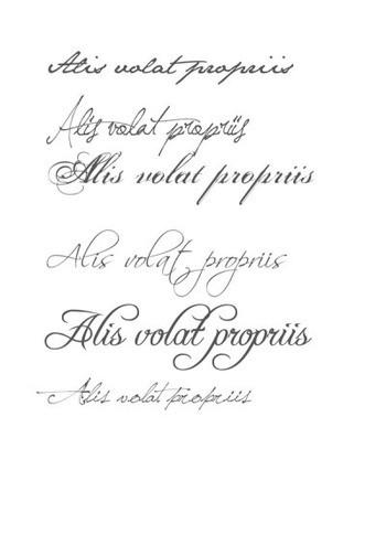 alis volat propriis on Tumblr