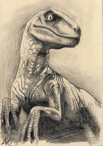 velociraptor drawing - Google Search