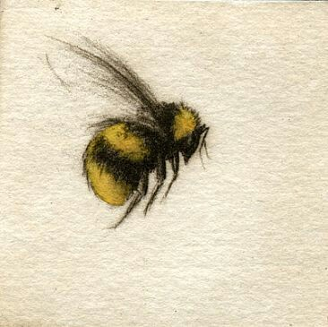 Bumble bee gotta have a couple of these guys on my sleeve with a lady bug or two and a butterfly m original