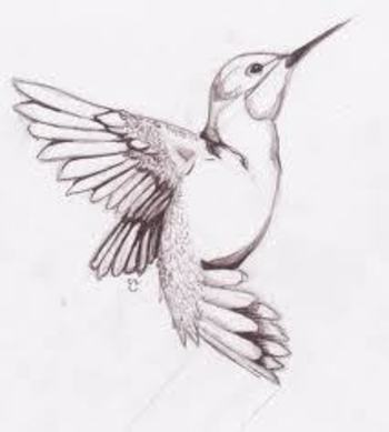 Hummingbird Tattoos Designs, Hummingbird Tattoos Ideas, Hummingbird Tattoos Pictures | Find Me a Tatt