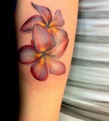 Realistic Plumeria tattoo