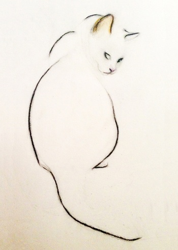 Cat Looking Over Her Shoulder Print, 2014 by Kellas Campbell