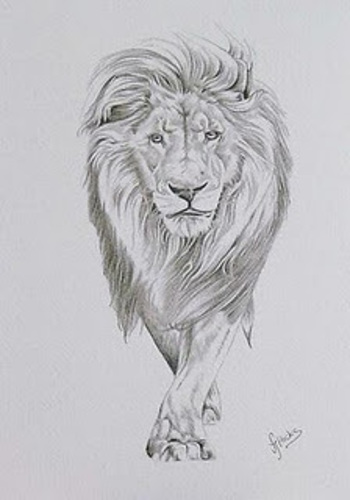 Graffiti Buzz: lion sketch graffiti design