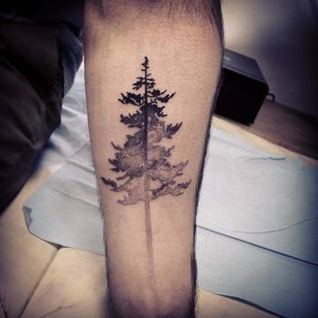 Beautiful Tree Tattoos Part 2 | Tattoodo.com