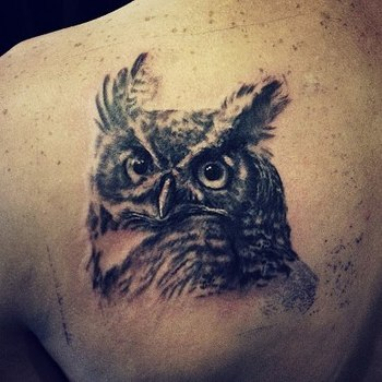 David Allen owl tattoo