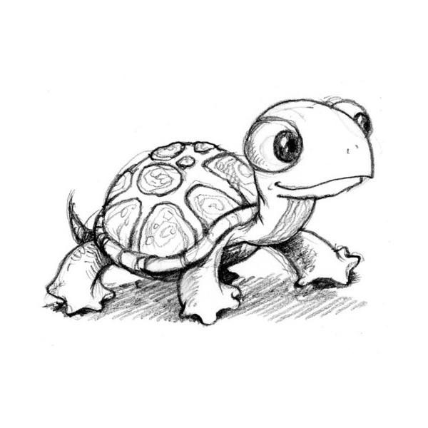 Cartoon turtle tumblr original