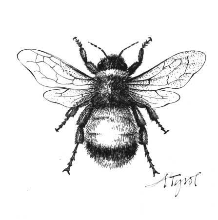 Illustration by adelaide tyrol long live the queen bee original